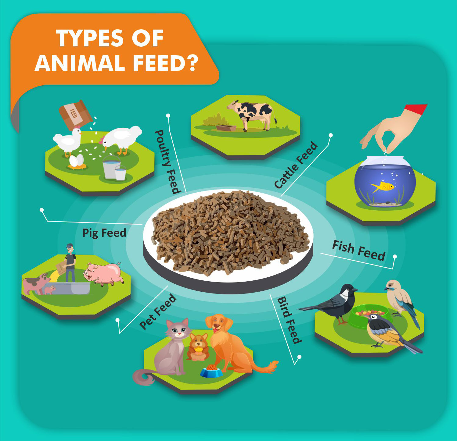 types of animal feed