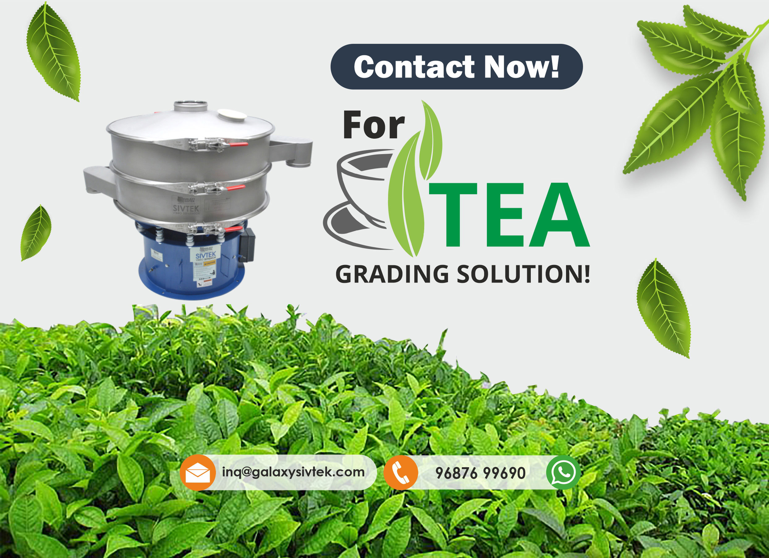Contact us for tea grading