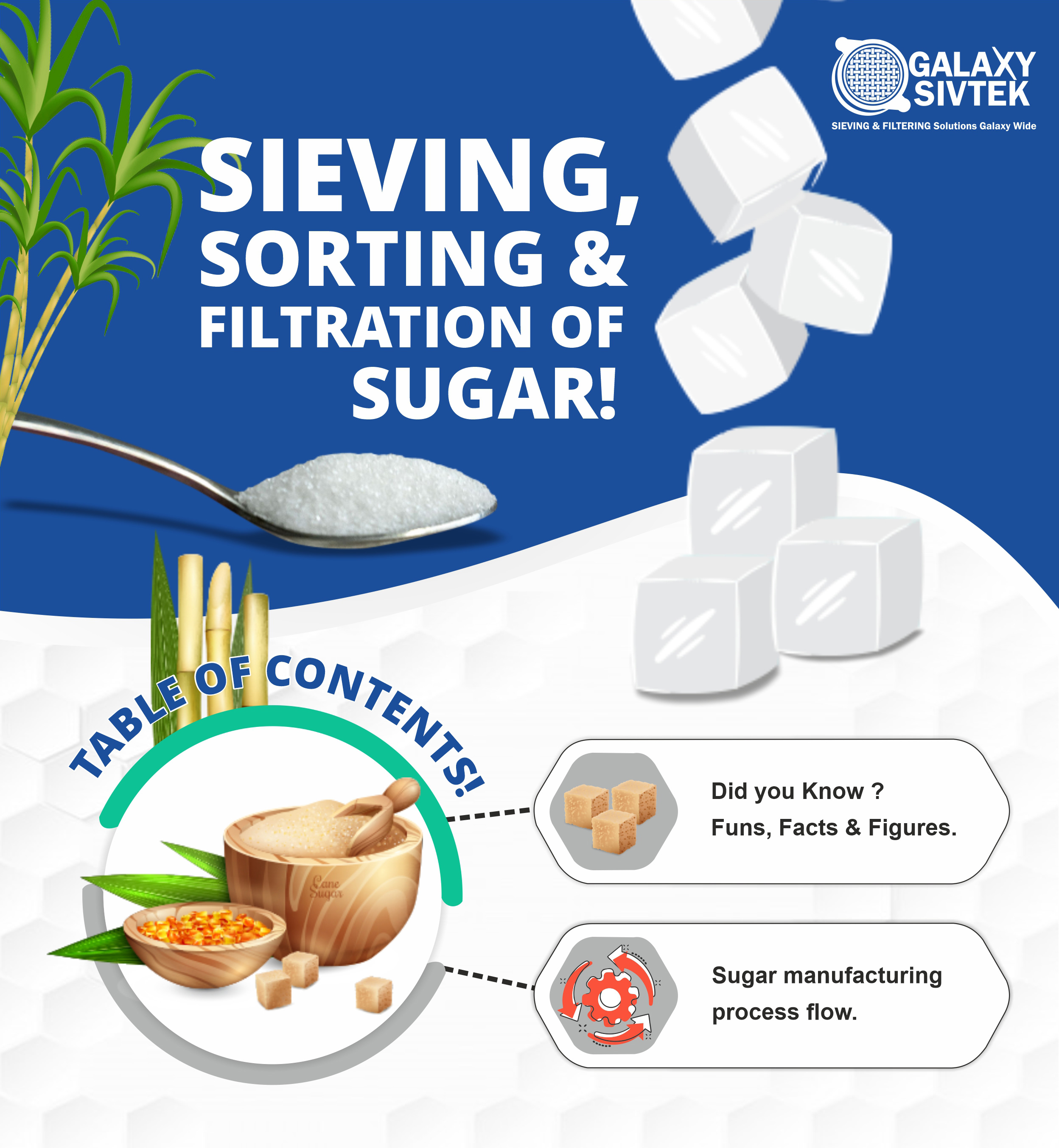 Sugar process Infographic